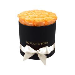 Medium - Peach Endless Roses - Black Box