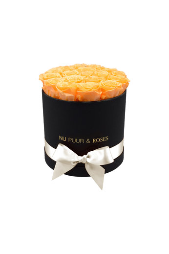 Medium - Peach Endless Roses - Black Box