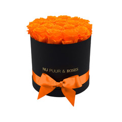 Medium - Orange Endless Roses - Black Box