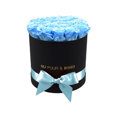 Medium - Blue Endless Roses - Black Box