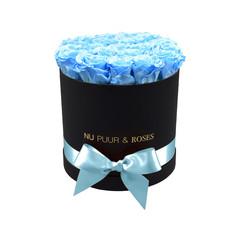 Medium - Roses Éternel Bleu - Boîte Noire