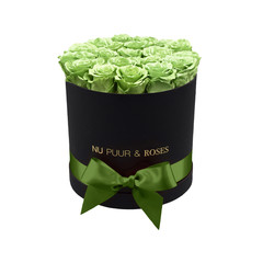 Medium - Green Endless Roses - Black Box