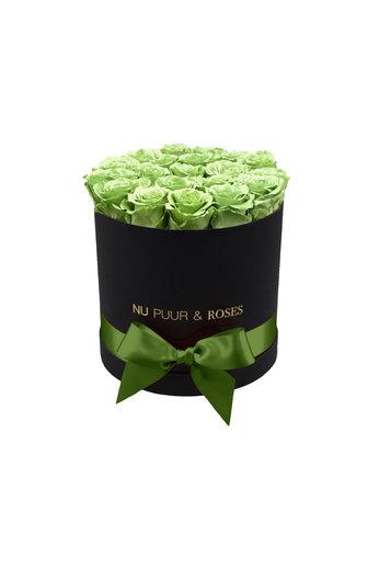 Medium - Roses Éternel Vert - Boîte Noire