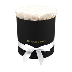 Large - White Endless Roses - Black Box