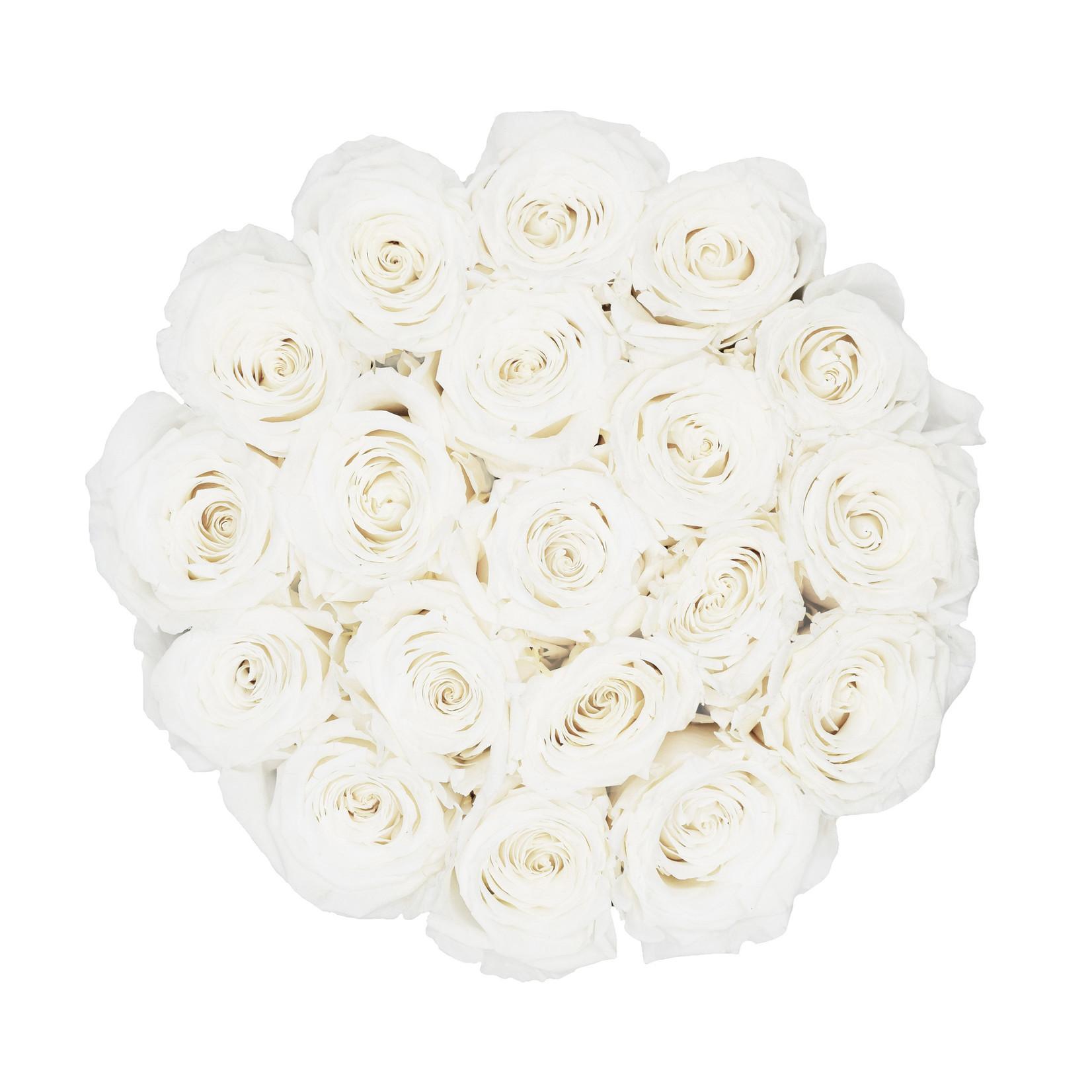 Large - White Endless Roses - Black Box