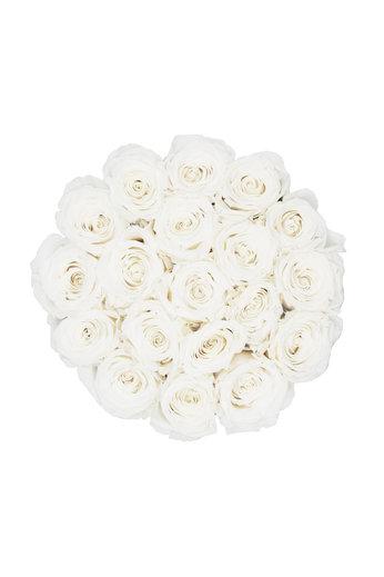 Large - Roses Éternel Blanches - Boîte Noire
