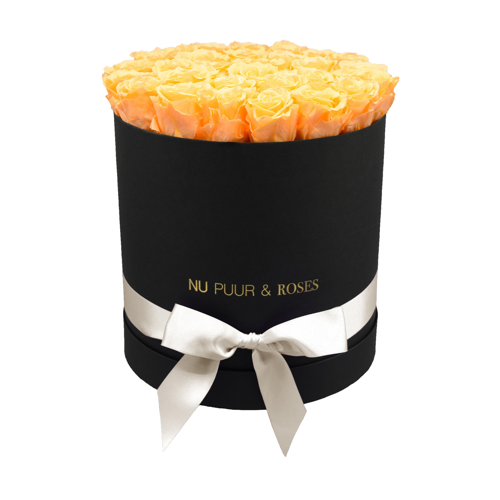 Large - Peach Endless Roses - Black Box