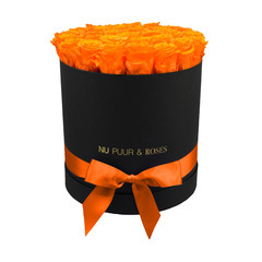 Large - Orange Endless Roses - Black Box