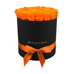 Large - Roses Éternel Orange - Boîte Noire