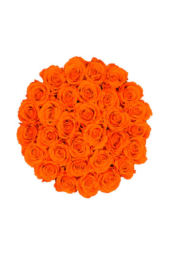 Large - Orange Endless Roses - Black Box