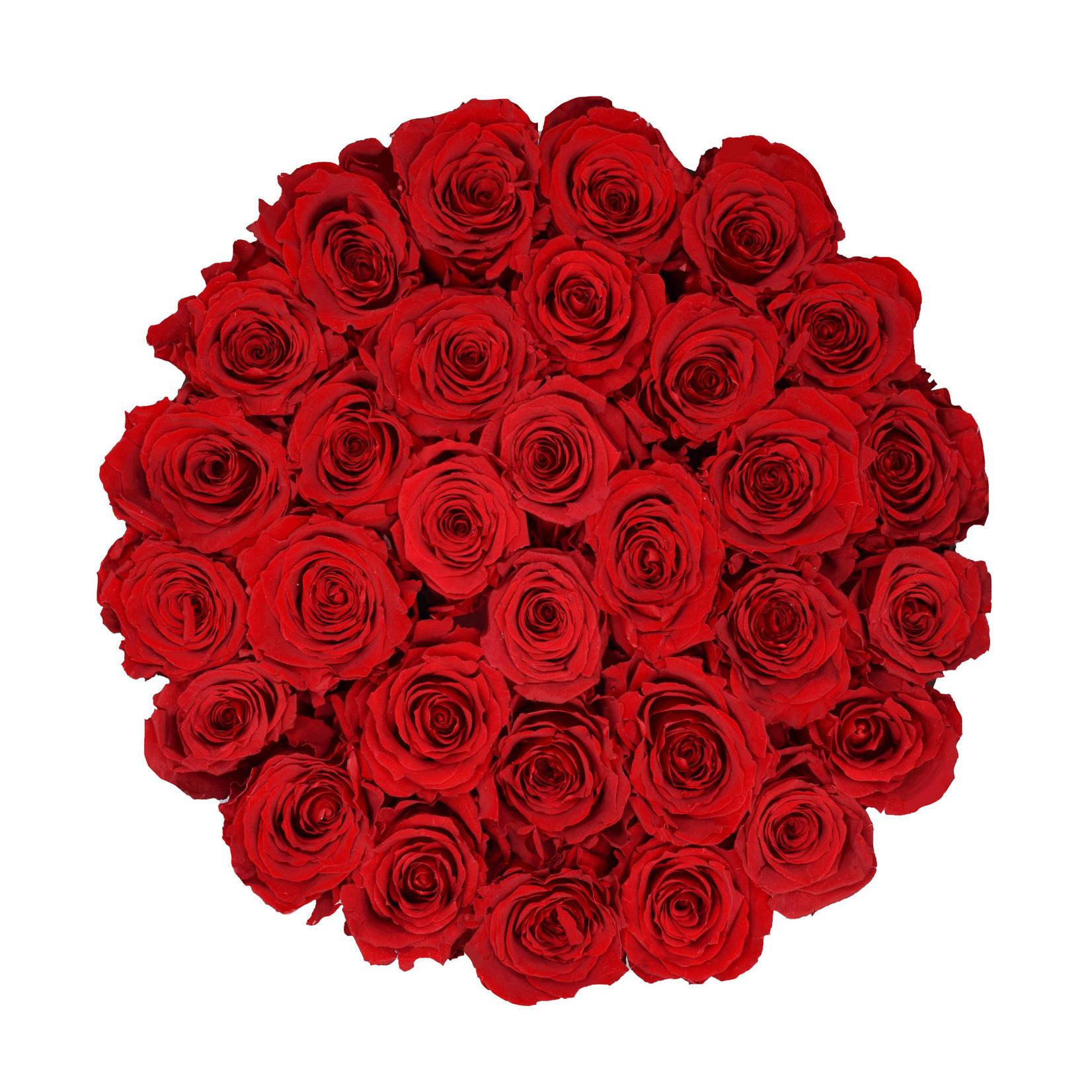 Large - Roses Éternel Rouge - Boîte Noire