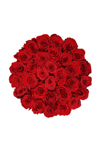 Large - Red Endless Roses - Black Box