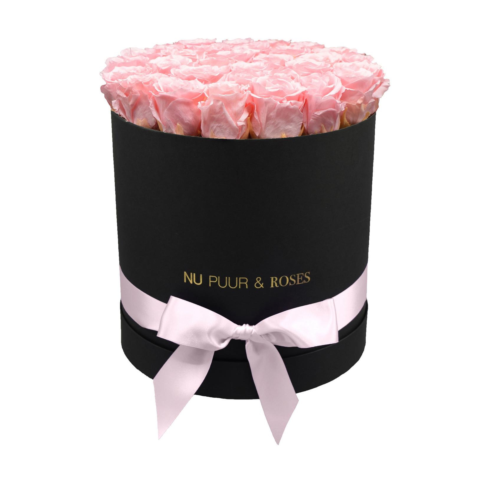 Large - Roses Éternel Rose - Boîte Noire