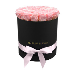 Large - Pink Endless Roses - Black Box