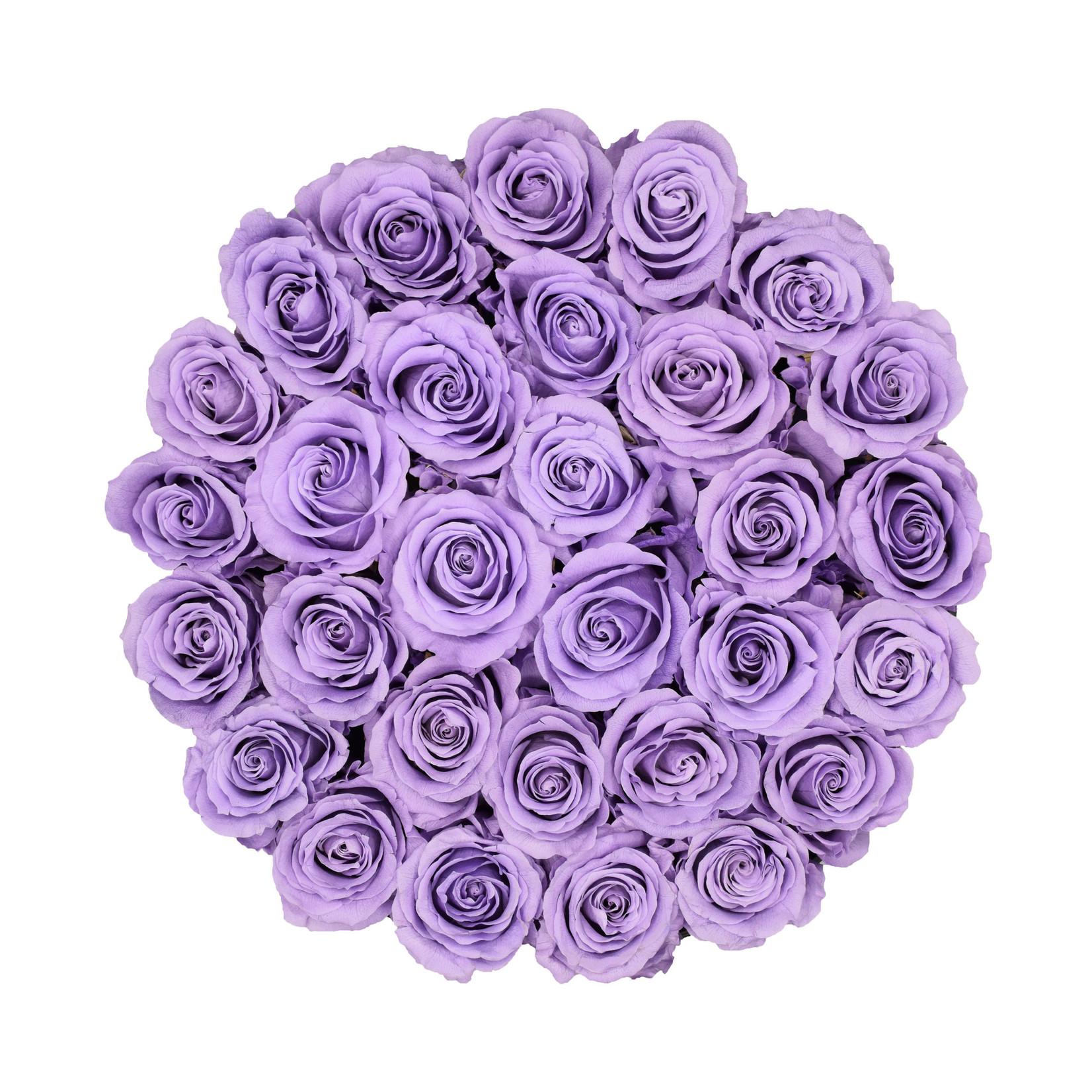 Large - Roses Éternel Lilas - Boîte Noire