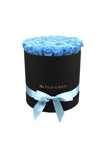 Large - Roses Éternel Bleu - Boîte Noire