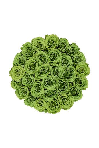 Large - Roses Éternel Vert - Boîte Noire