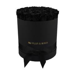 Large - Roses Éternel Noir - Boîte Noire