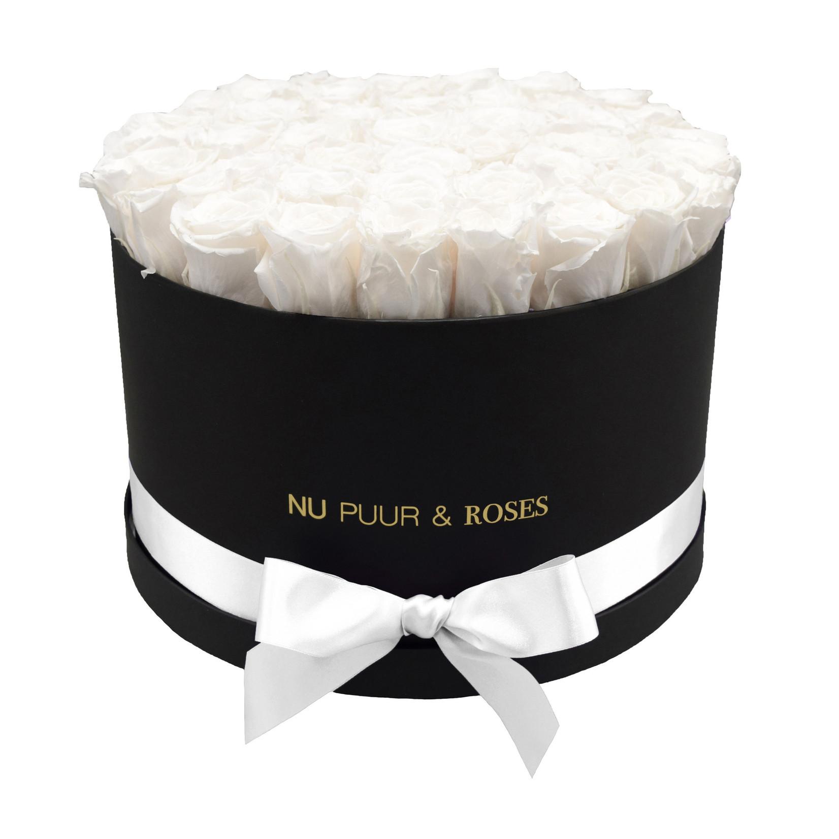 Extra Large - White Endless Roses - Black Box