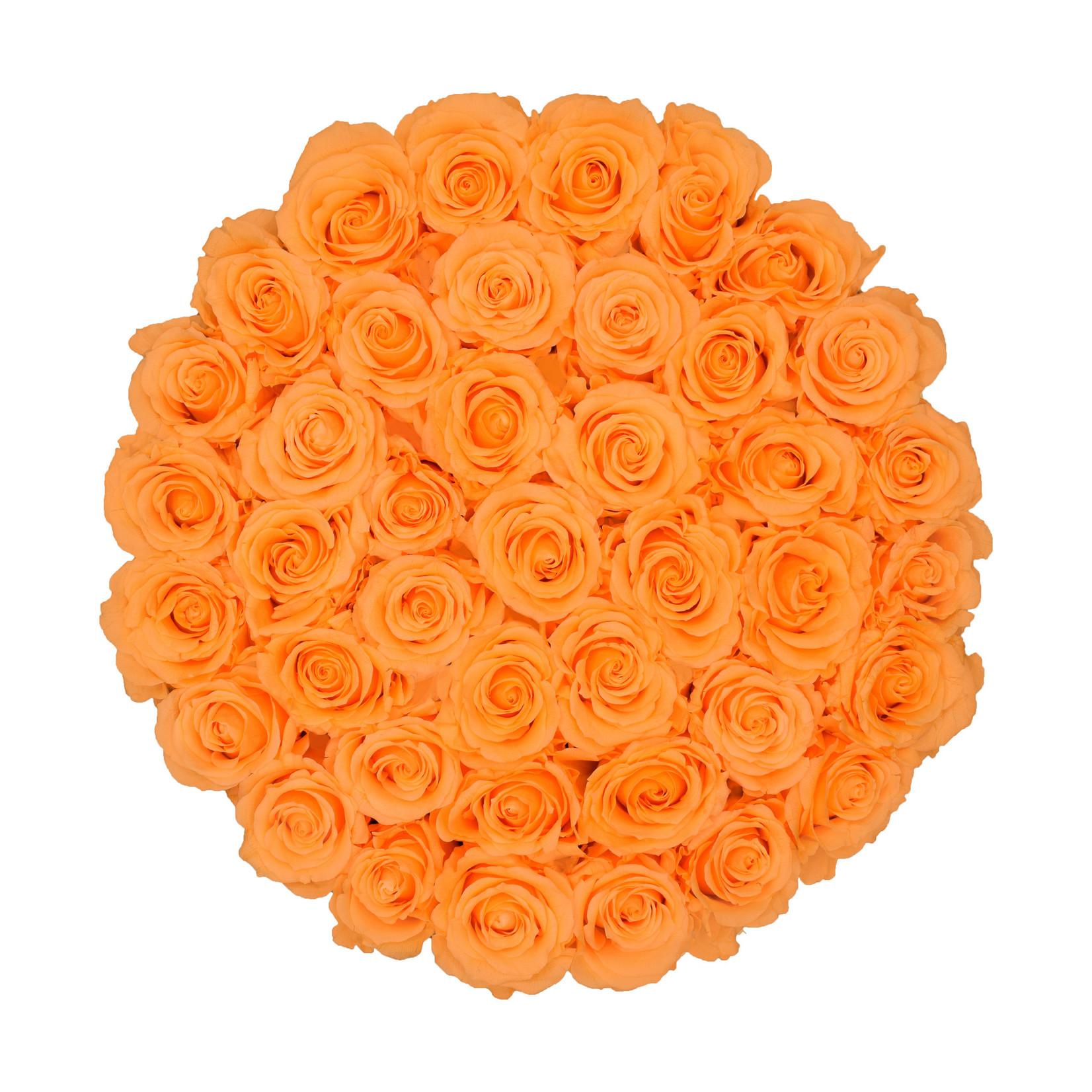 Extra Large - Peach Endless Roses - Black Box