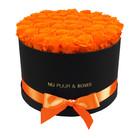 Extra Large - Orange Endless Roses - Black Box