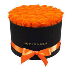 Extra Large - Orange Endless Roses - Black Box