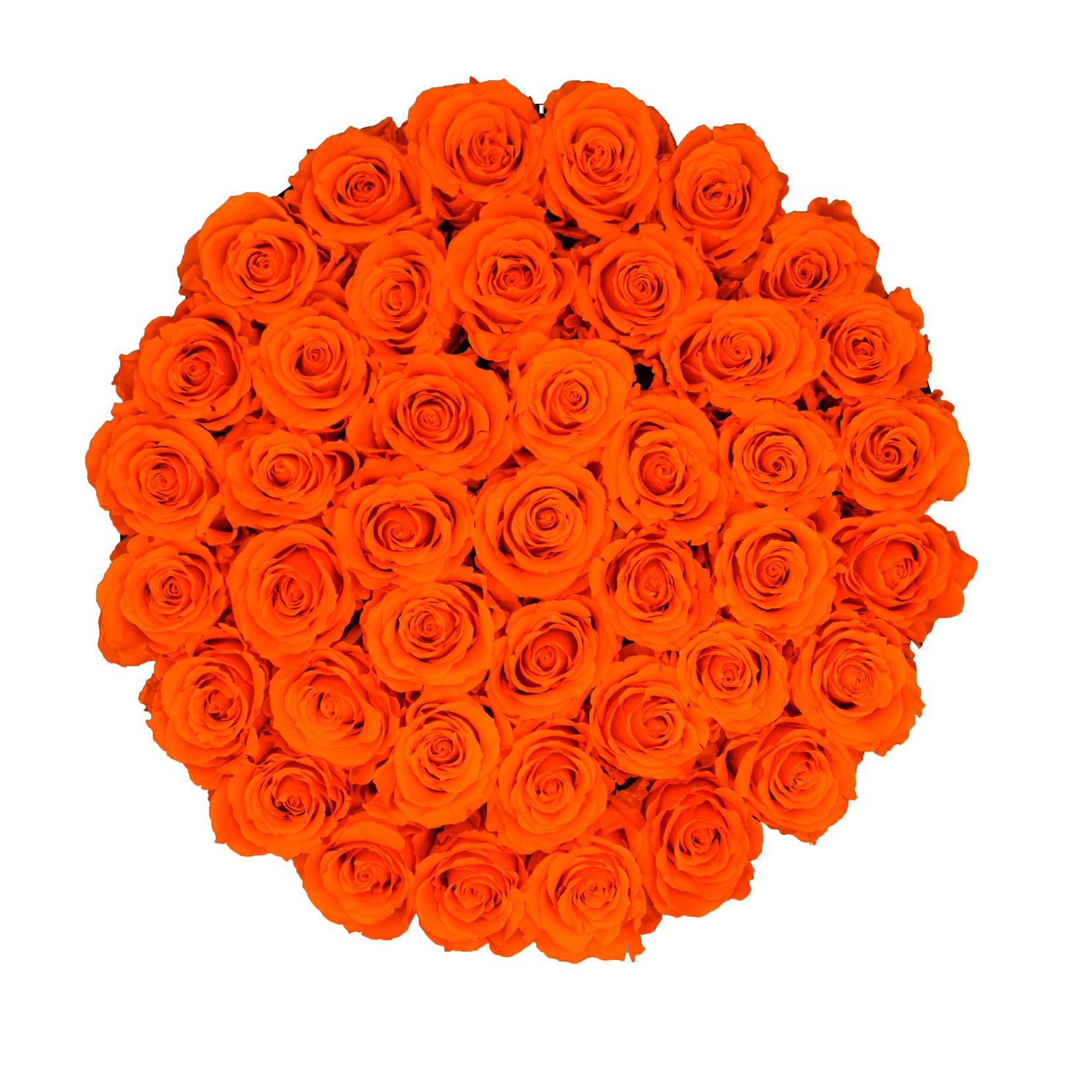 Extra Large - Roses Éternel Orange - Boîte Noire