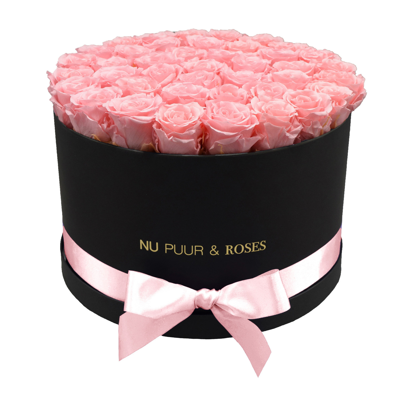 Extra Large - Pink Endless Roses - Black Box