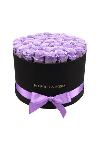 Extra Large - Roses Éternel Lilas - Boîte Noire