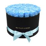 Extra Large - Blue Endless Roses - Black Box