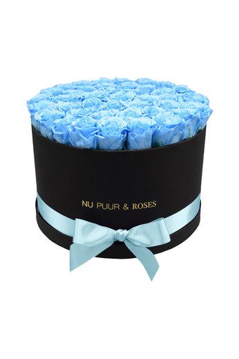 Extra Large - Roses Éternel Bleu - Boîte Noire
