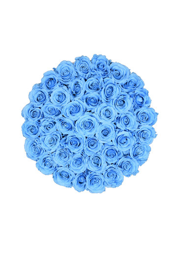 Extra Large - Blue Endless Roses - Black Box