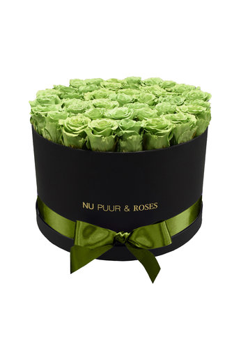 Extra Large - Green Endless Roses - Black Box