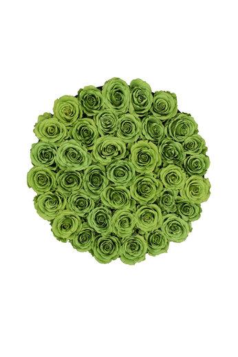 Extra Large - Roses Éternel Vert - Boîte Noire