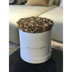 Medium - Gold Endless Roses - White Box