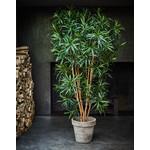Silk-ka Plant Dracena Groen   183 cm