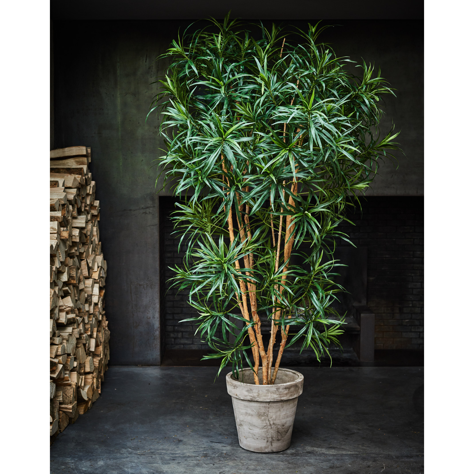 Silk-ka Plant Dracena Green | 183 cm