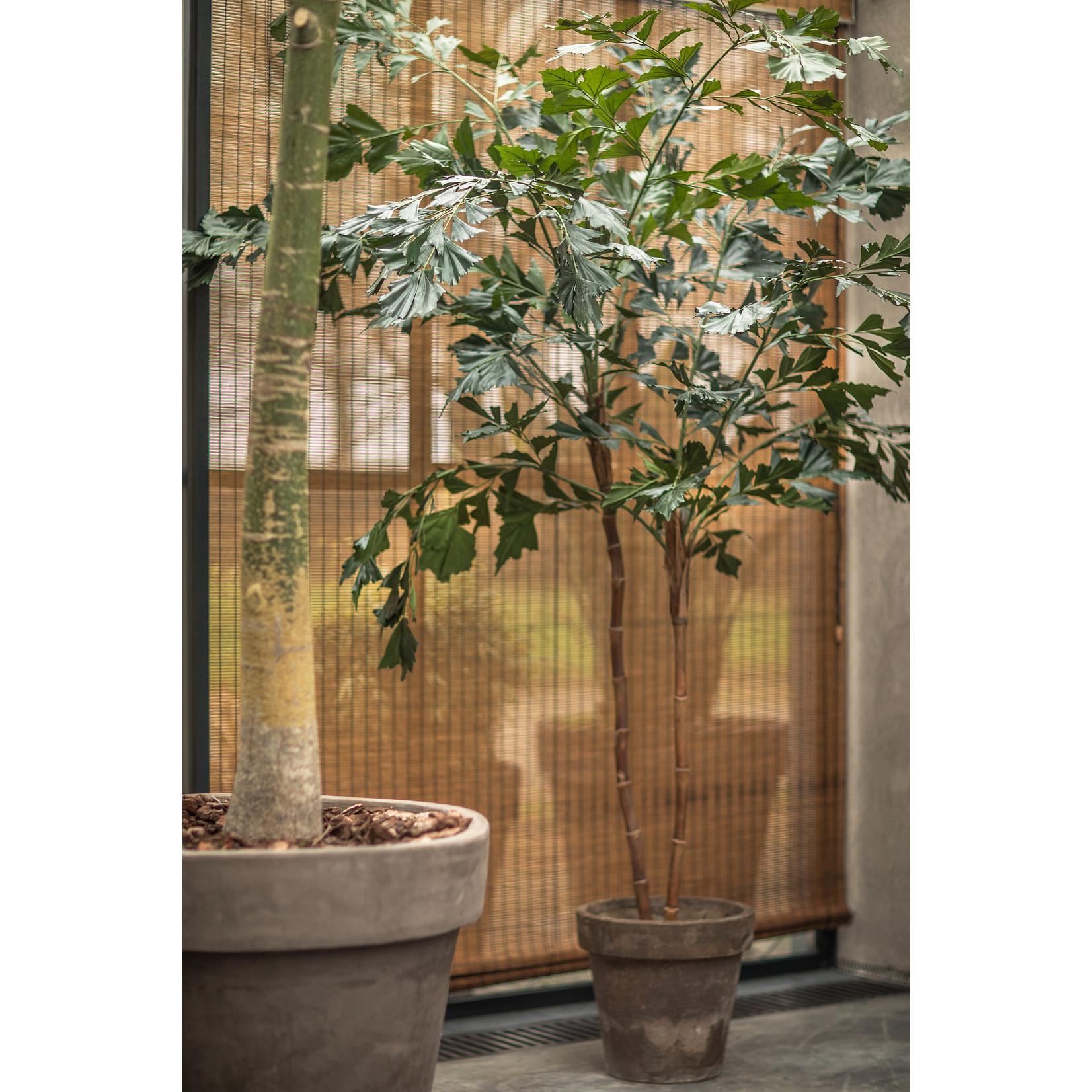 Silk-ka Plant Palm Groen | 240 cm