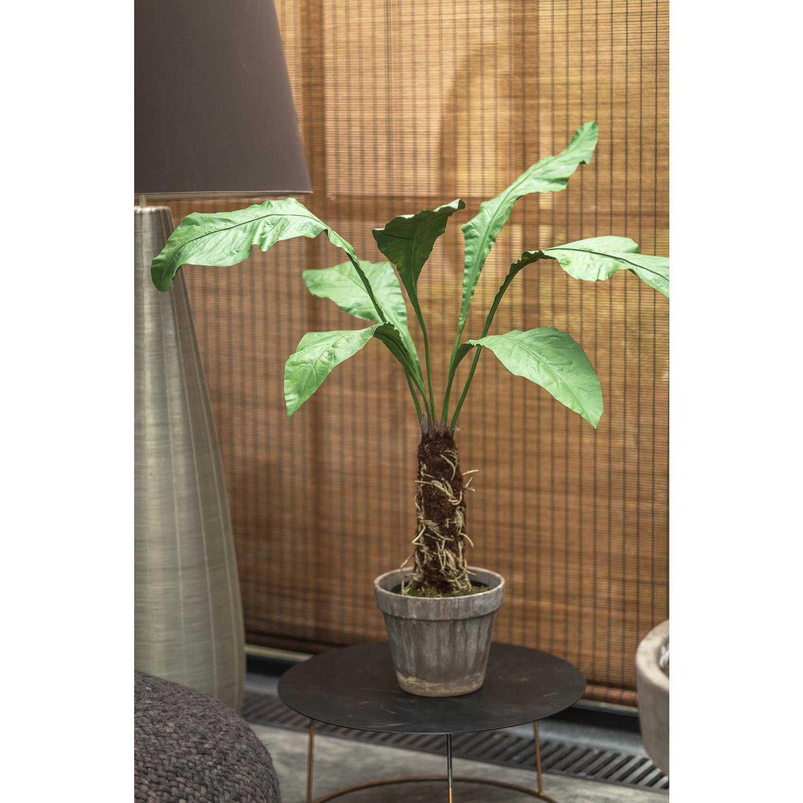 Silk-ka Plant Green   140 cm
