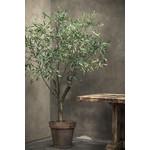 Silk-ka Plant Olijf Groen | 198 cm