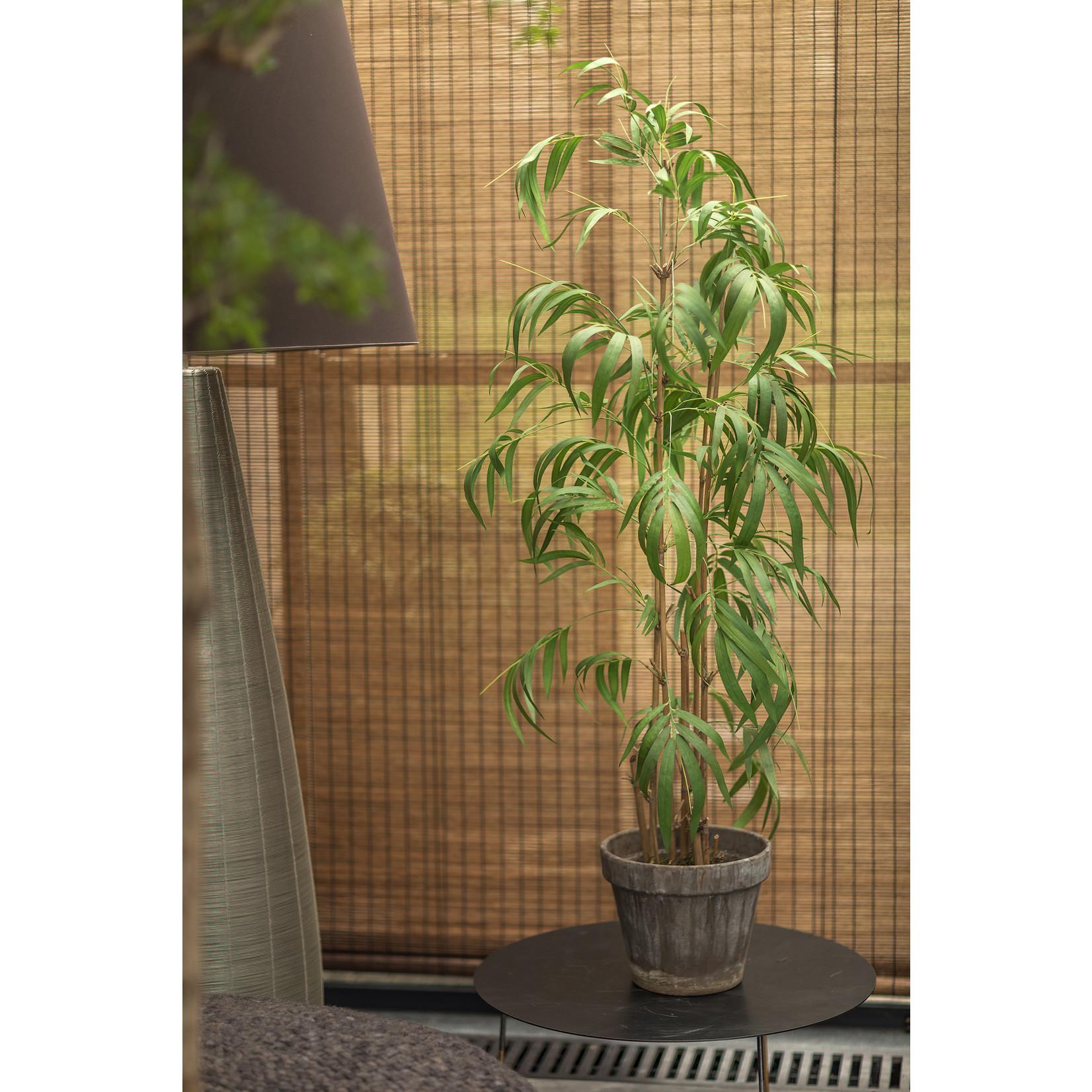 Silk-ka Bamboo Green   165 cm