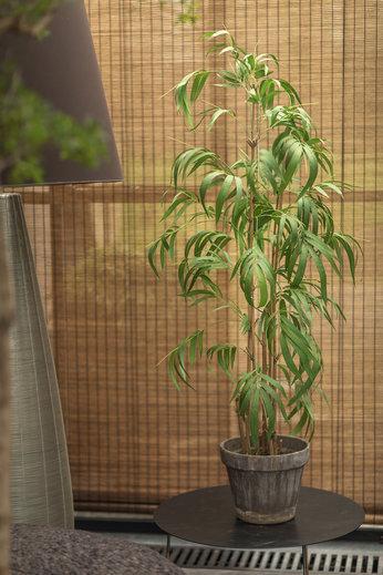 Silk-ka Plant Bamboe Groen   165 cm