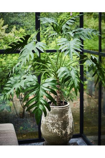 Silk-ka Plant Monstera Groen | 99 cm