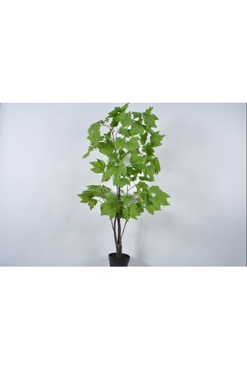 Silk-ka Tree Green | 153 cm