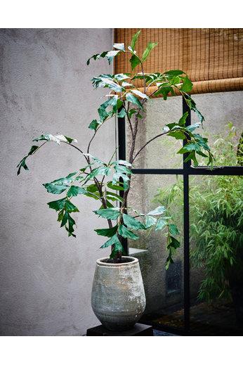 Silk-ka Boom Groen | 153 cm