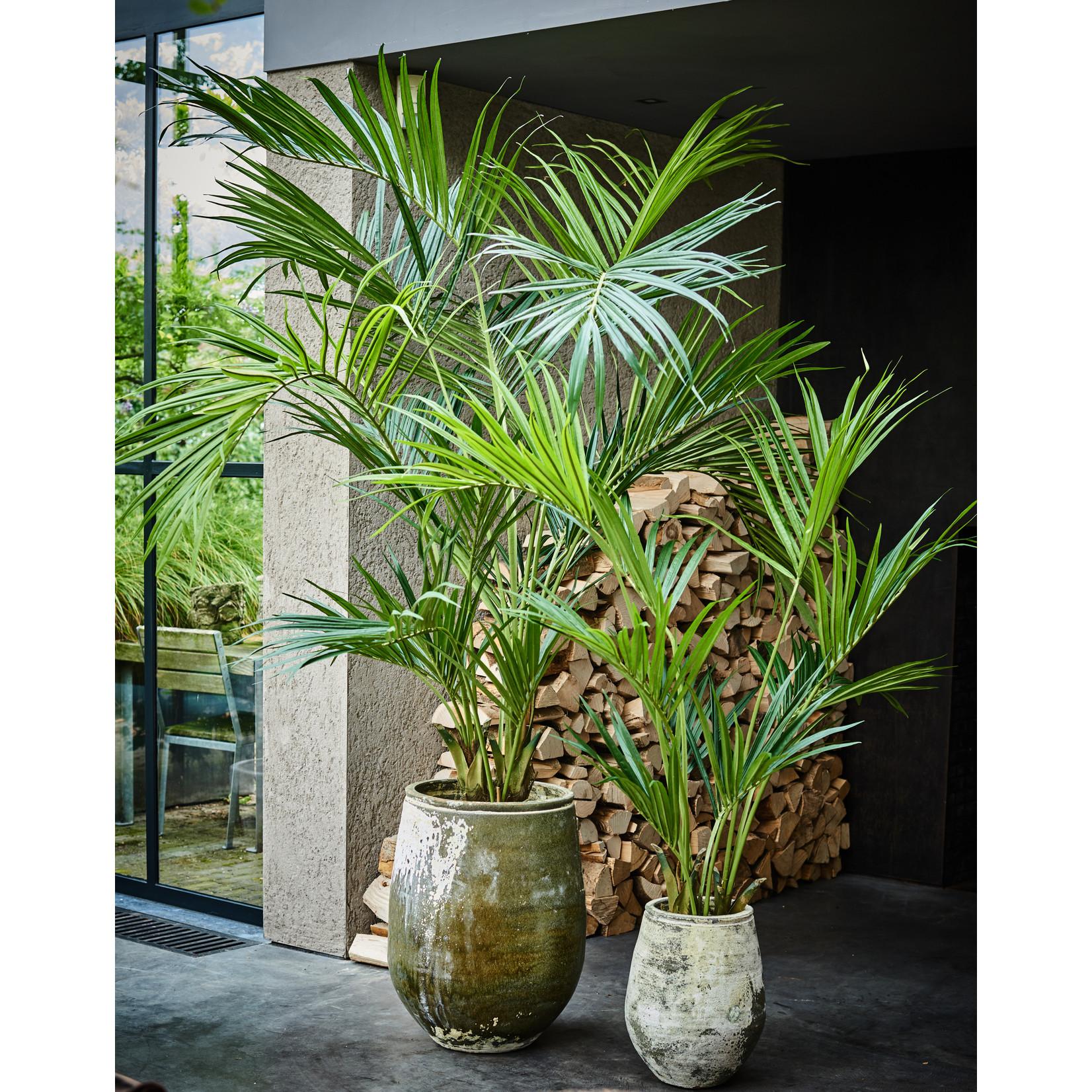 Silk-ka Palm Green   220 cm