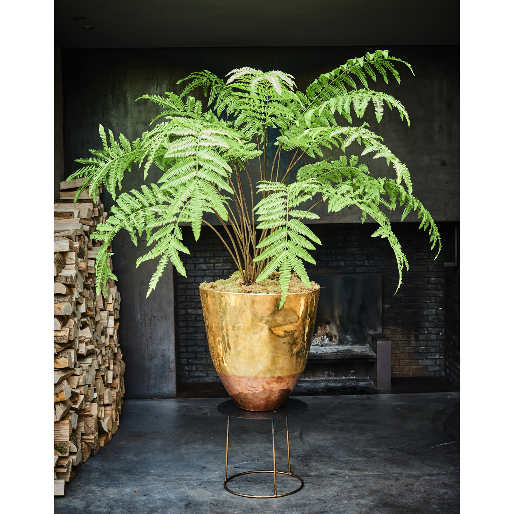 Silk-ka Plant Fern Green   185 cm