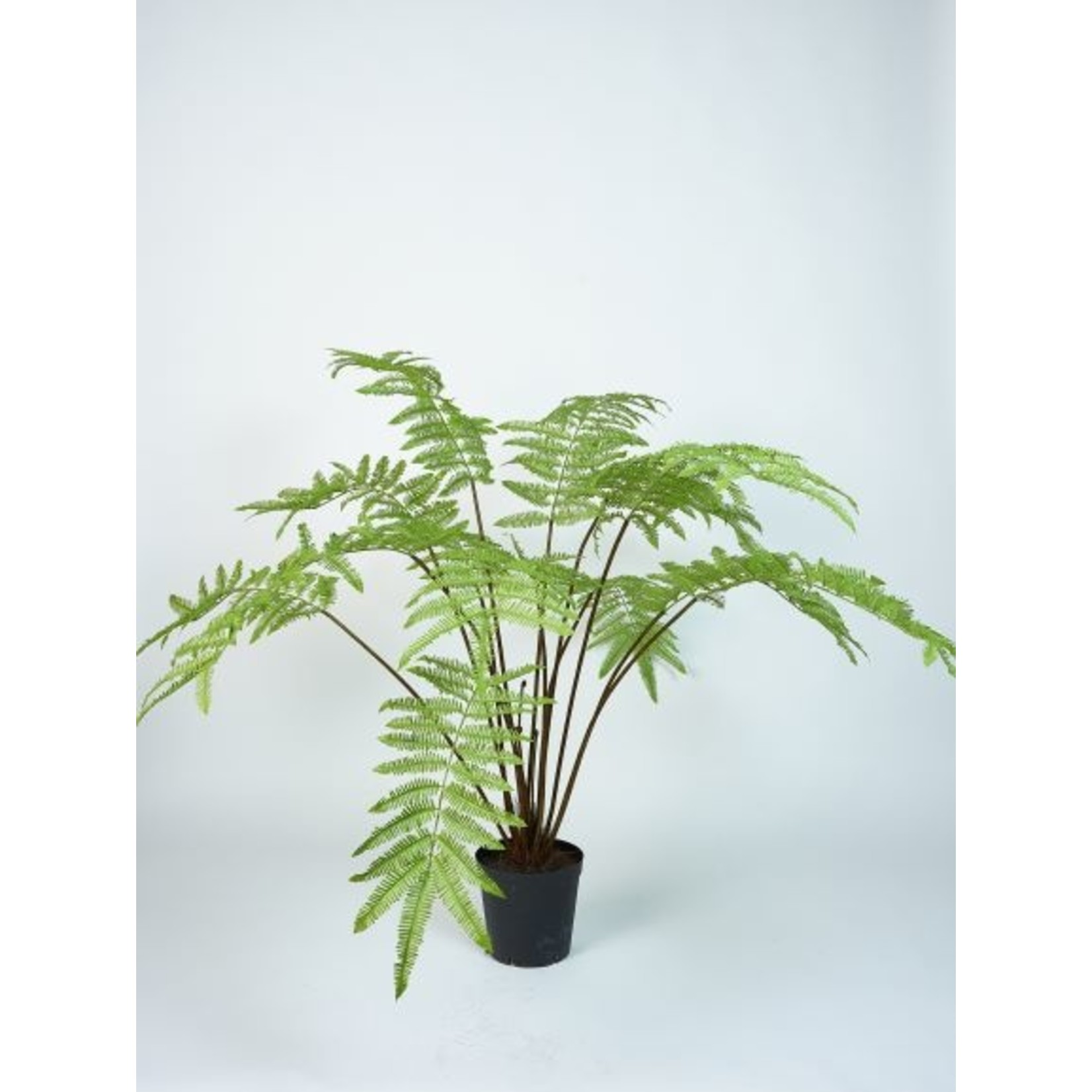 Silk-ka Varen Groen | 185 cm