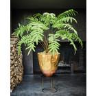 Silk-ka Plant Fern Green | 156 cm