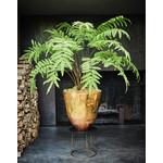 Silk-ka Fern Green   156 cm